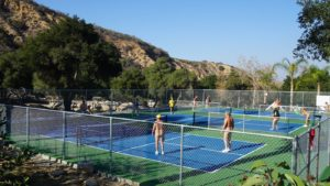 nude pickleball